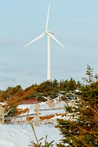 Windmill in North Cape