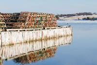 Lobster traps sit on the wharf in New London awaiting the spring lobster season