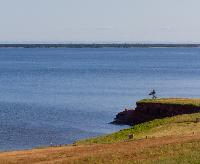 Off in the distance is St. Peter's Island while the coast line of Prince Edward Island looks on. Cumberland Prince Edward Island.