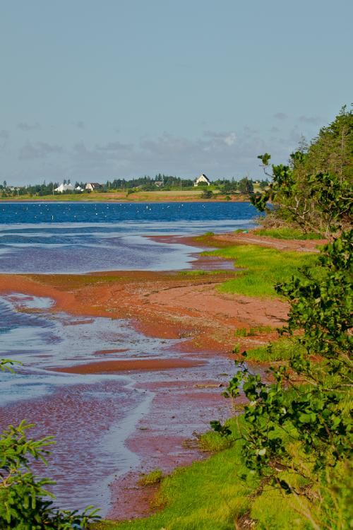 New London Bay sits idle as the tide moves in and outh on the north coast of PEI