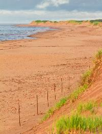 People walk along the beach on the North Shore of Prince Edward Island while the sand dunes overlook the beach